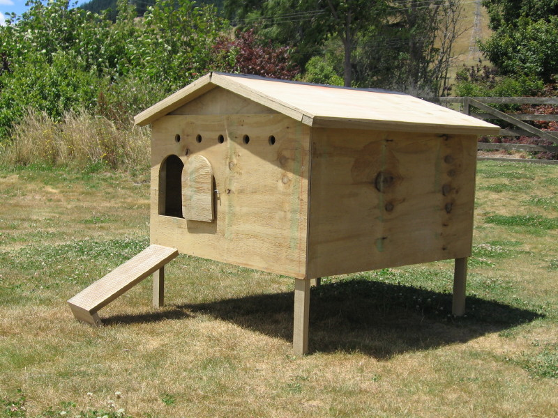 Yam coop diy chicken coop on a budget for Hen house design plans